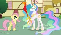 Princess Celestia shows Philomeena to Fluttershy S01E22