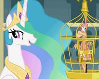 Princess Celestia wants Philomeena to greet ponies S01E22