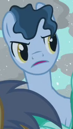 The Tenth Doctor Earth pony id S03E13