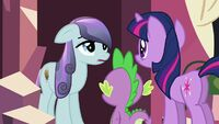 Twilight Interviews the Locals Crystal Empire