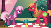 180px-Cheerilee and Big Macintosh starting at each other S2E17