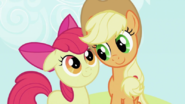 800px-S2E05 Applejack and Apple Bloom
