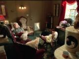 Sleeping Cat Lady's House