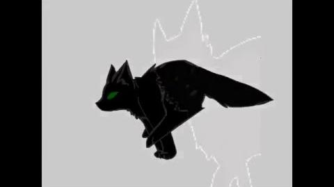 Hollyleaf AMV- Disturbia