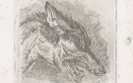 Wolf mit offenem Maul