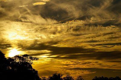 Yellow-Sky-White-Grey-Horizon-Sunset-Gold-Clouds-426259