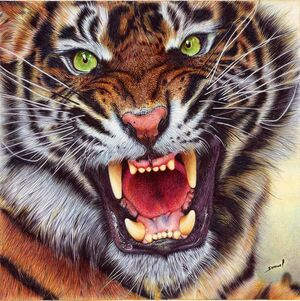 Angry tiger ballpoint pen by vianaarts-CCBYNCND30