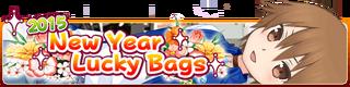 2015 Lucky Bags Banner