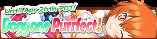 Doggone Purrfect! banner