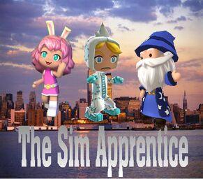 The Sim Apprentice