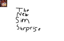 The Sim Surprise Banner