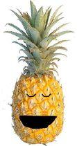 Perry the Pineapple sleeping