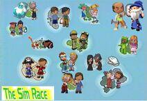 The Sim Race Banner
