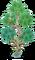 Small Tree (Water Island)