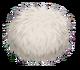 Mammott-egg