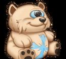 Polar Teddybear