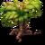 Barnacle Palm