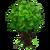 Razzli Tree