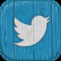 MSM Twitter