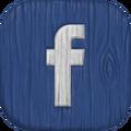 MSM Facebook