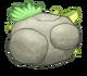 Quarrister-egg