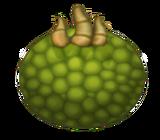 Oaktopus