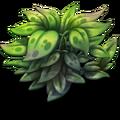 Small Bush.png
