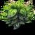 Small Bush