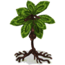 Saggle Tree.png