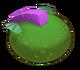 Rare Riff-egg