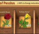 05 Flower's Passion