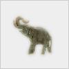 Hidden-africanelephant