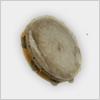 Hidden-tambourine