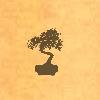 Sil-bonsai