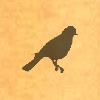 Sil-jaybird