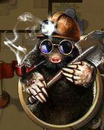Mole-that-stole-joy