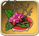 Ikebana-of-iris