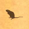 Sil-rat2