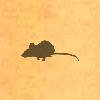 Sil-rat