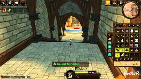 Villagers and Heroes Reborn Walkthrough - Detail Duty
