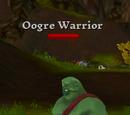 Oogre Warrior