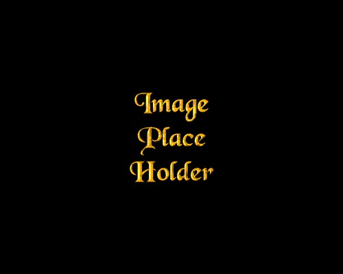 File:Place holder.jpg