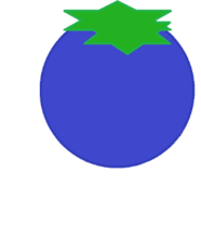 Blueberry Body