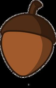 Acorn Body