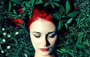 Ivy by Ytzeek