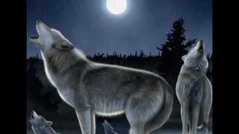 A Wolf Song Spirit Wolves
