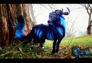 Sold posable fantasy moon dust wolf by wood splitter lee-d5nom6l