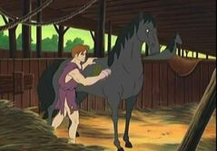 Bellerophon and Pegasus 5