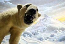 Гигантский белый медведь Аляски3