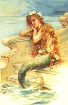 Hardy little mermaid